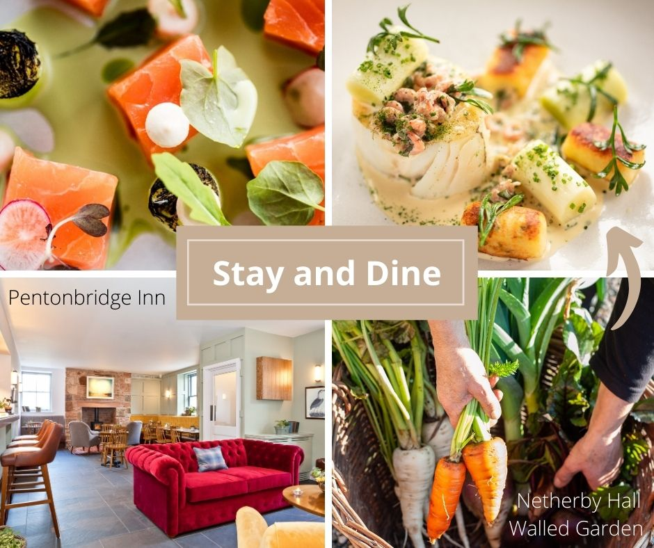 Stay and Dine